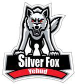 Yehud Silver Fox - U18